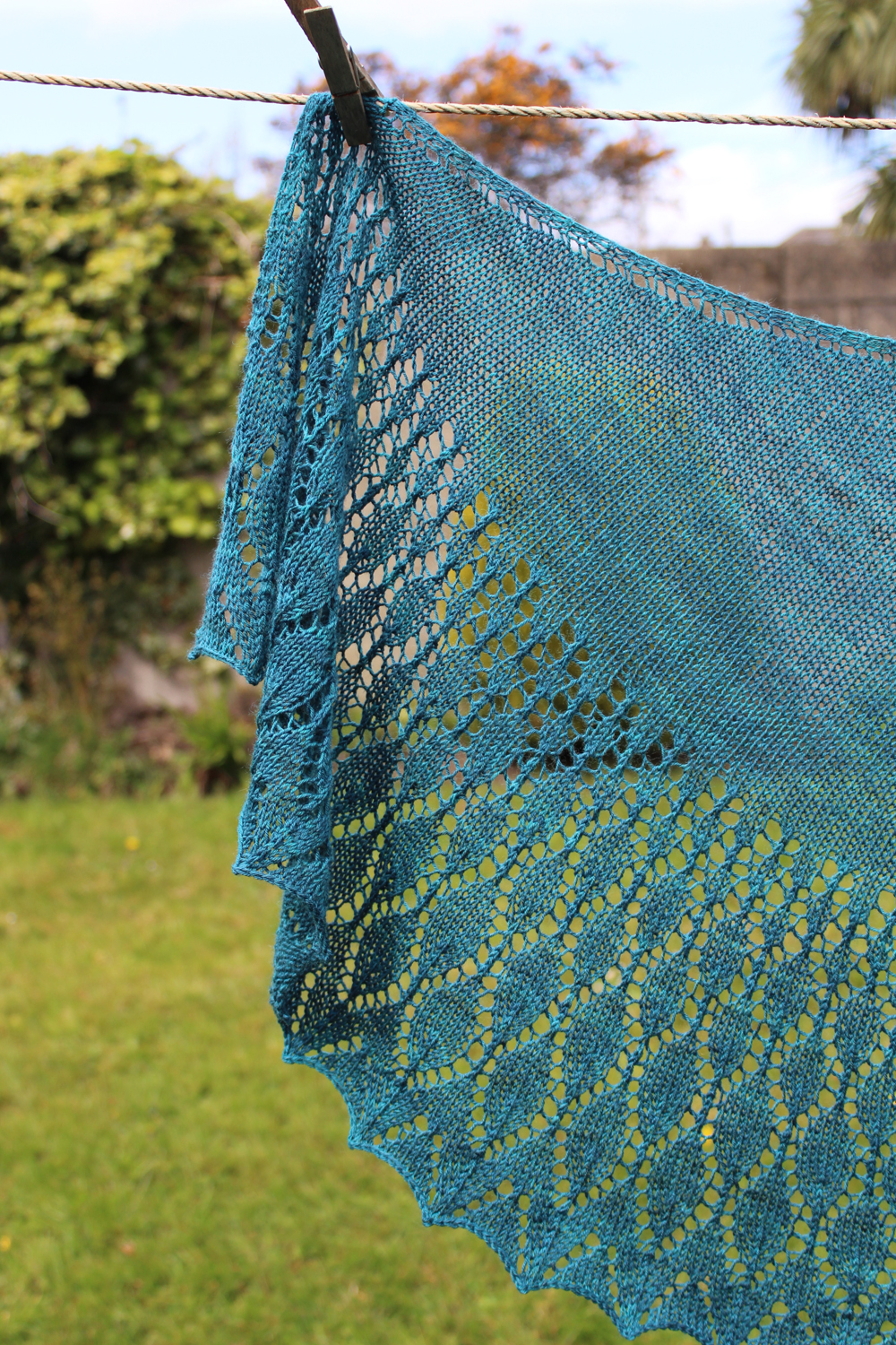 Glasnevin Shawl